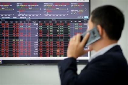 Cổ phiếu TTH ra khỏi diện cảnh báo