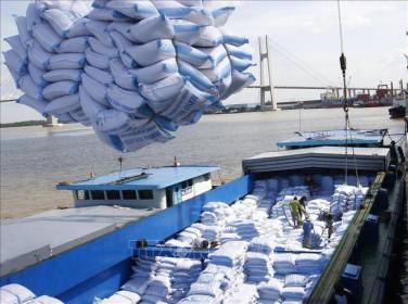 Kết nối tiêu thụ và xuất khẩu nông - thủy sản sang Algeria và Senegal