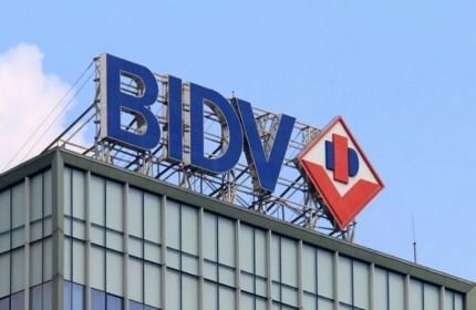 BIDV sắp đấu giá khoản nợ hơn 285 tỷ đồng của Thủy sản Chất Lượng Vàng