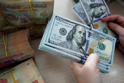 Nửa cuối năm, Ngân hàng Nhà nước sẽ tích cực thu mua ngoại tệ