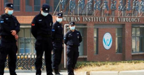Trung Quốc bác kêu gọi của WHO mở điều tra mới nguồn gốc Covid-19