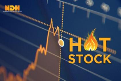 Một cổ phiếu tăng 14 lần từ đầu năm