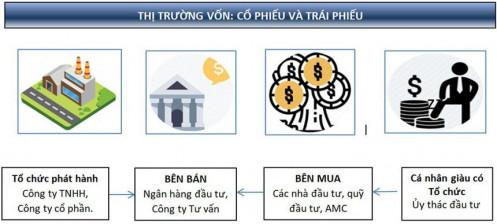 Tập đoàn Trí Việt (TVC) tạm ứng cổ tức 8% tiền mặt, chào bán 30% vốn cho nước ngoài
