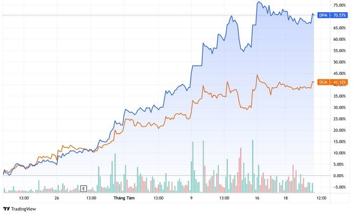 Định giá cổ phiếu phân bón không còn hấp dẫn trong dài hạn?