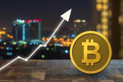 Giá Bitcoin hôm nay ngày 21/8: Bitcoin thẳng tiến đến 50.000 USD, vốn hóa thị trường vượt mốc 2.000 tỷ USD